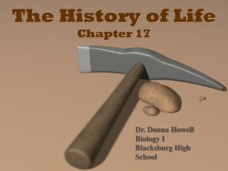 The History of Life Chapter 17