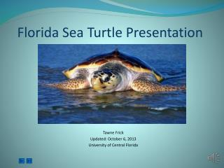 Florida Sea Turtle Presentation