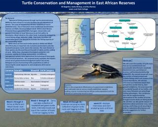 Turtle  Conservation and Management in East African  Reserves