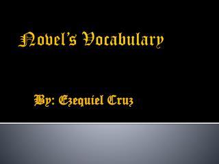 Novel�s  Vocabulary