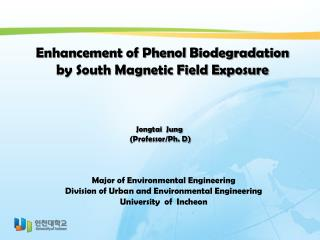 Enhancement of Phenol Biodegradation  by South Magnetic Field Exposure
