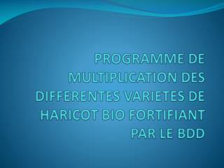 PROGRAMME DE MULTIPLICATION DES DIFFERENTES VARIETES DE HARICOT BIO FORTIFIANT PAR LE BDD