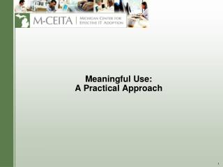 Meaningful Use: A Practical Approach