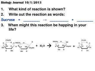 Biology Journal 10/1/2013