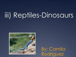 iii)  Reptiles -Dinosaurs