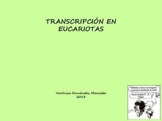 TRANSCRIPCIÓN EN EUCARIOTAS Verónica Fernández Mancebo 2013