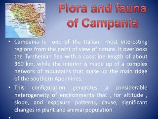 Flora and fauna  of  Campania