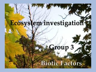 Ecosystem investigation Group 3 			Biotic Factors