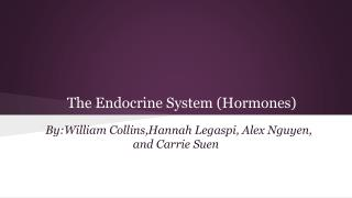 The Endocrine System (Hormones)