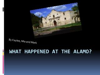 What Happened at the Alamo?