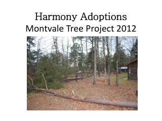 Harmony Adoptions Montvale Tree Project 2012