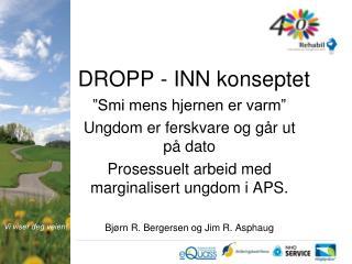 DROPP - INN konseptet