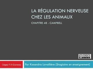 La régulation nerveuse chez les animaux