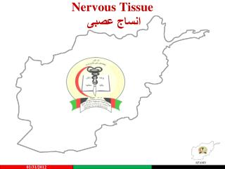 Nervous Tissue انساج عصبی