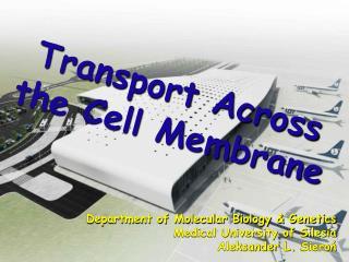 Transport Across the Cell Membrane