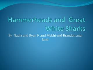 Hammerheads and  Great White Sharks