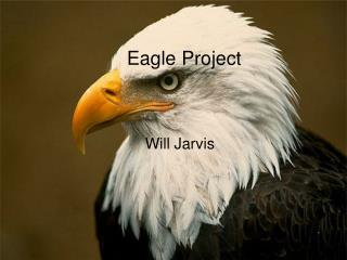William Jarvis's Eagle Project