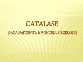 Oana Nafornita  &  wendela birgersson