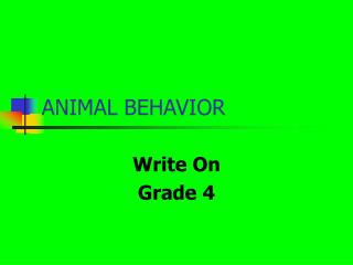 animal-behavior