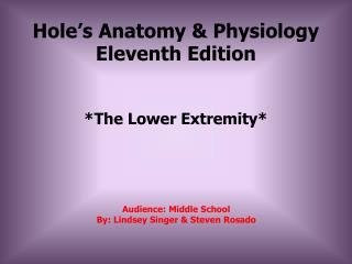 Hole's Anatomy & Physiology Eleventh Edition
