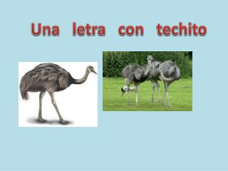 Una   letra  con   techito