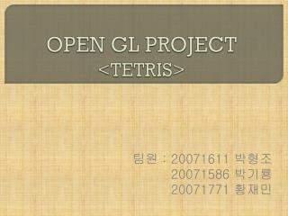 OPEN GL PROJECT <TETRIS>