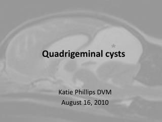 Quadrigeminal cysts
