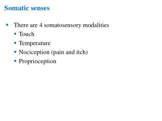 Somatic senses