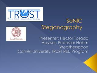 SoNIC Steganography
