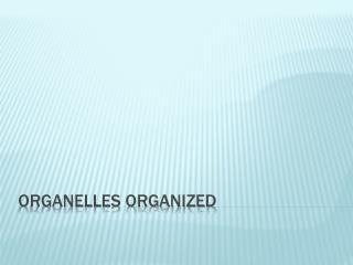 Organelles organized