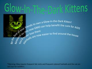 Glow-In-The-Dark Kittens