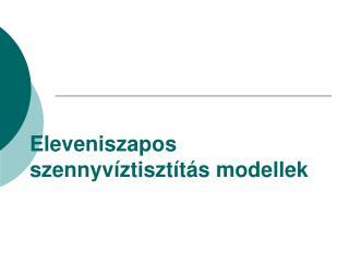 Eleveniszapos szennyvíztisztítás modellek
