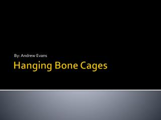 Hanging Bone Cages