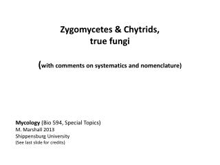 Zygomycetes  &  Chytrids , true fungi ( with comments on systematics and nomenclature)