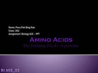 Amino Acids The building blocks of proteins