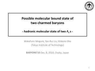 Wakafumi  Meguro, Yan- Rui  Liu, Makoto Oka (Tokyo Institute of Technology)
