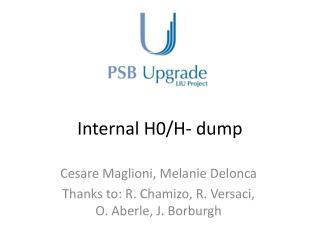 Internal H0/H-  dump