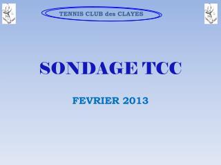 SONDAGE TCC