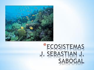 ECOSISTEMAS J. SEBASTIAN J. SABOGAL
