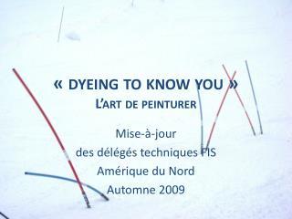 « dyeing to know  you » L'art de peinturer