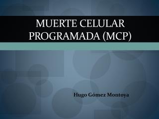 Muerte Celular Programada (MCP)