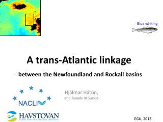 A  trans-Atlantic  linkage - between  the Newfoundland and  Rockall  basins