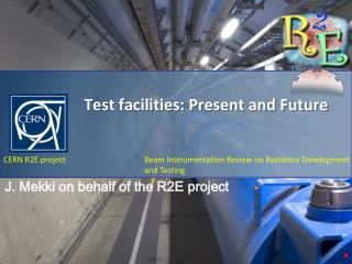 Test facilities: Present and Future