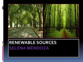 Renewable sources Selena Mendoza