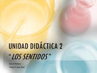 """UNIDAD DIDÁCTICA 2  """" LOS SENTIDOS"""""""