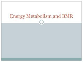 Energy Metabolism and BMR