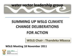 SUMMING UP WSLG CLIMATE CHANGE DELIBERATIONS  FOR ACTION