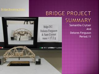 Bridge Project Summary