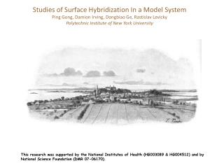Studies of Surface Hybridization In a Model System