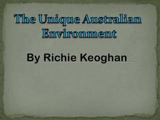 By Richie Keoghan